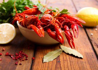 Hemsidor för restauranger - Seafood